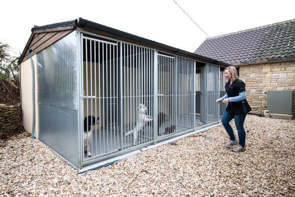 Dog Kennels near Sherborne Dorset